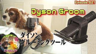 犬の毛を掃除機で吸ったら楽だろうな~と検索してみたら、ダイソンの商...