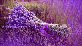 Ladies In Lavender---Joshua Bell