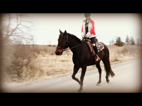 FIRST TIME RIDING MY NEW HORSE AT HOME AND 2 SURPRISES! Day 089 (03/28/20)