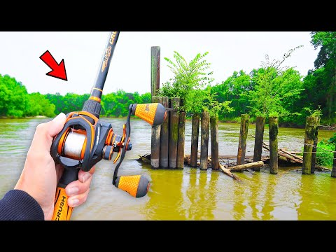 Searching For GIANT Bass In Backwater Creeks (River Fishing)
