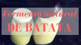 COMO FAZER FERMENTO NATURAL DE BATATA