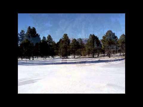 2 Minute Vacation Winter Field