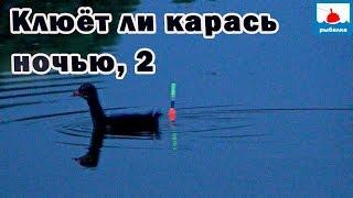 Рыбалка ночью за крупным карасём на поплавок! 14 серия(!)
