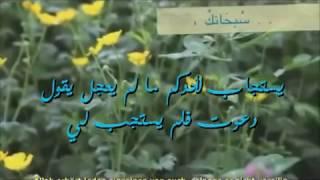Wann lacht Allah gepriesen sei Er   Scheikh Mishary Al Kharraz الشيخ مش