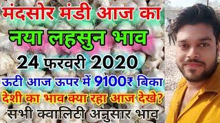 Garlic Price Today   Mandsaur Mandi Garlic Price Today   Garlic Price Today With Quality   Lahsun
