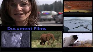 Documentary Films   Planet Earth Part 7 Great Plains 1/3