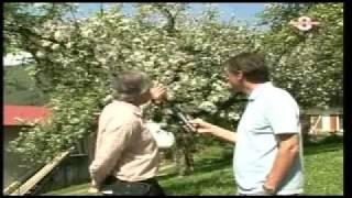 Patrick Jagou sur TV8 Mont-Blanc le 05-05-2008