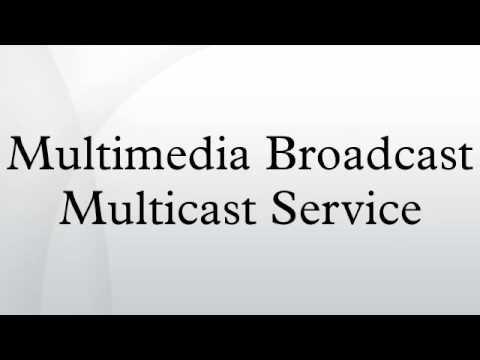 Multimedia Broadcast Multicast Service