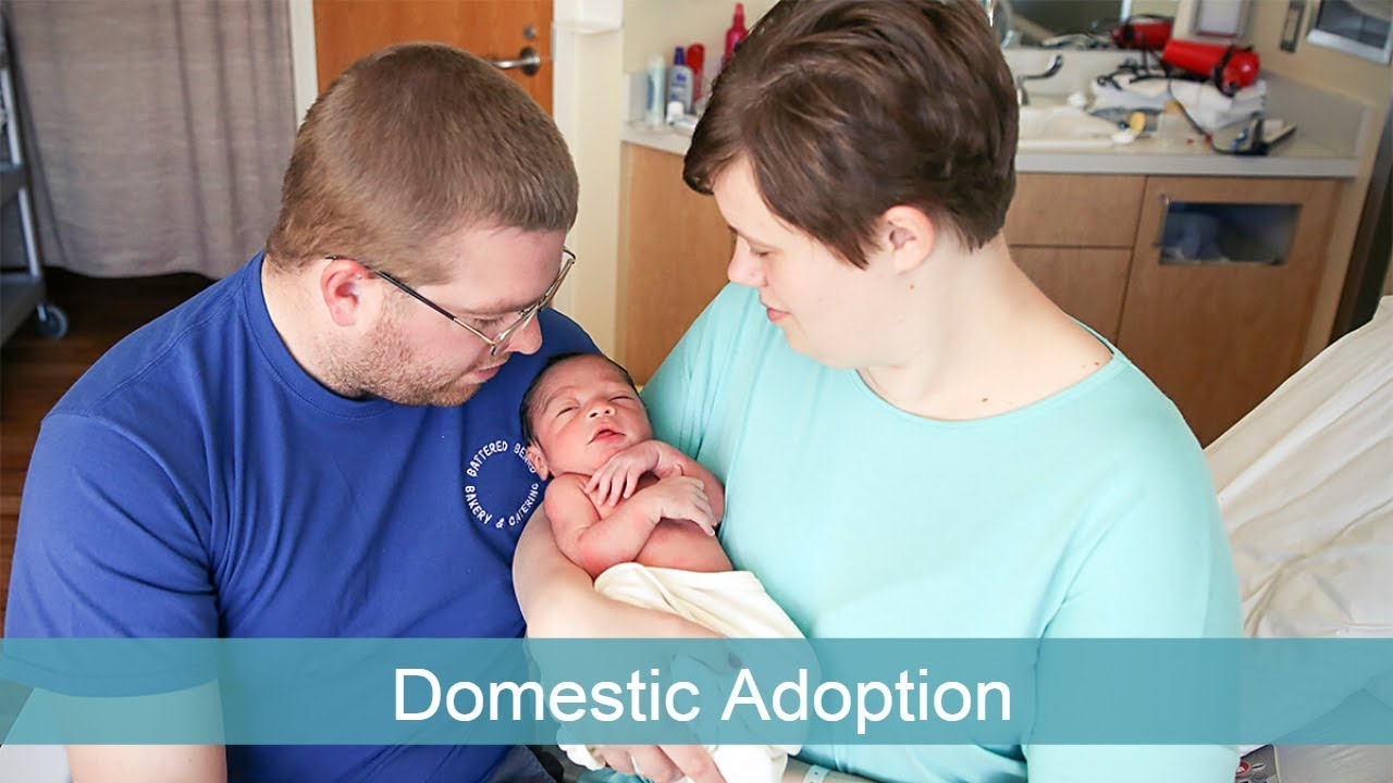 adopt a baby what is domestic infant adoption?
