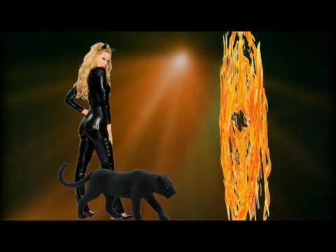 Пантера- (73- 75 Оживление фото,Эффект цветомузыки,Модификаторы)
