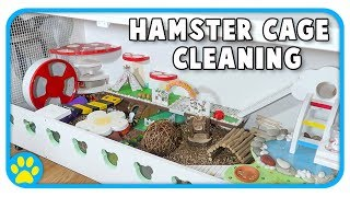 Cleaning Out Iodine's Hamster Cage | The Beaker DIY Cage