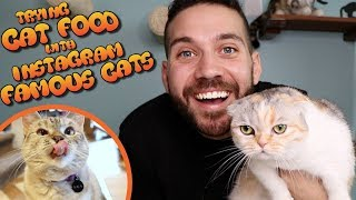 Trying Cat Food with the Famous Cats of Instagram (Nala Cat, White Coffee Cat)