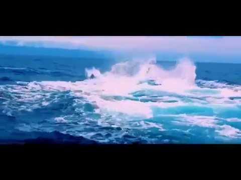 New Animal documentary 2015 Ocean Voyager Whale Documentary   The Biggest Sea Creatures