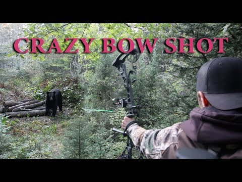 CRAZY Bow Shot On BIG BEAR!!! / Wisconsin Bear Hunting