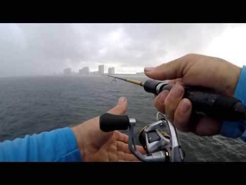 Gulf Shores Alabama Pier Fishing August 2017