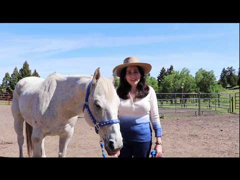 """Episode 1: Meet Wilson, The Cute And Comical Horse From The Book """"Go West Young Woman!"""""""