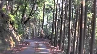 鴻坂峠(三重県道 721号・度会南勢線)