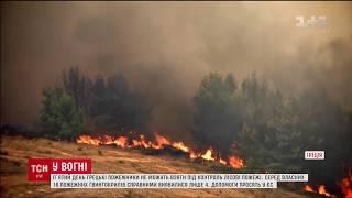 Греція п'ятий день бореться з полум'ям, що впритул наблизилося до Афін