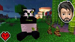 I Saved A SICK PANDA in Minecraft Hardcore!!