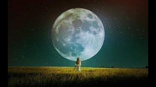 포토샵 | Moonlight 그래픽 아트 개인 작품 제…
