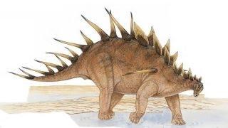 Kentrosaurus | Enciclopedia sobre Dinosaurios