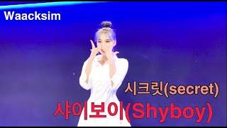 Secret(시크릿) _ Shy Boy(샤이보이) 커버댄스 왁심