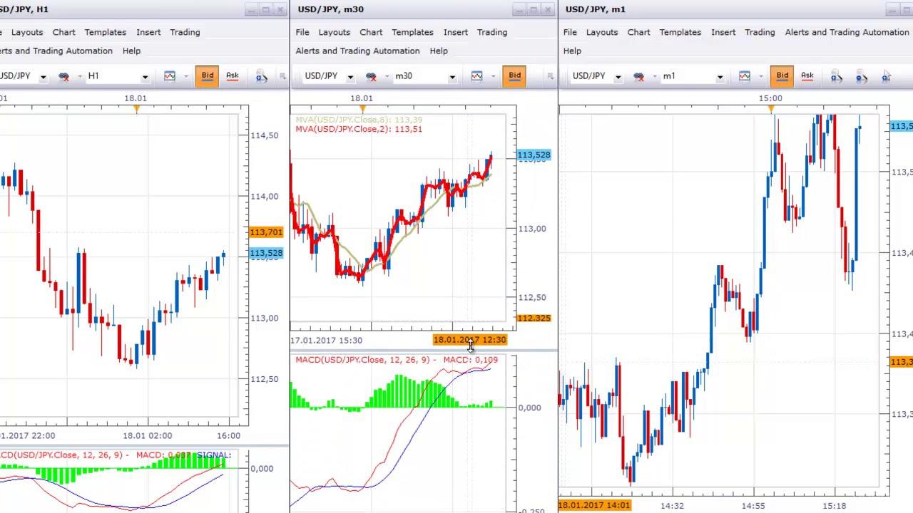 Forex Market Mentor