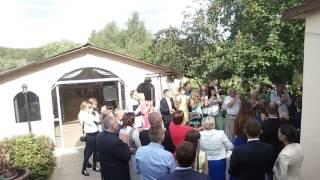 Шатер для свадьбы банкет в заречанах дарение