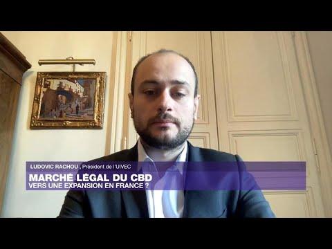 Marché légal du CBD : vers une expansion en France ?