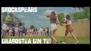 O-Zone - Dragostea Din Tei (Shockspears Hardstyle Remix) | HQ Video...