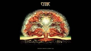 Cynic - The Lion