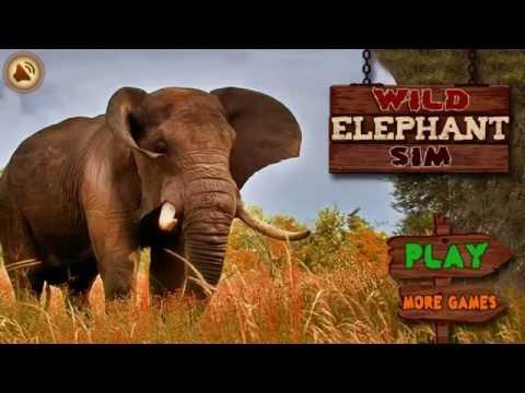angry elephant hack