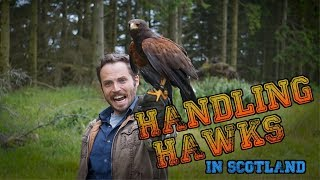 Falconry in Scotland - Captain and Clark