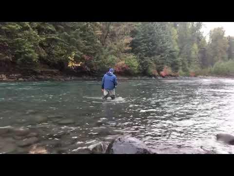Nass River Steelhead..the Take!