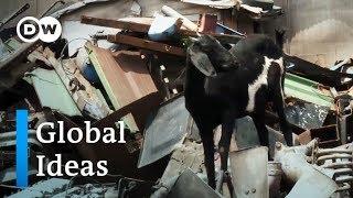Ghana: Was passiert mit Europas Schrott? | Global Ideas