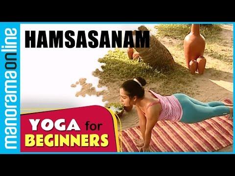 Hamsasanam  | Yoga for beginners | Health Benefits | Manorama Online