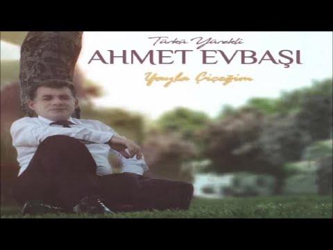 Ahmet Evbaşı - Adını Soramadım - (Official Audıo)