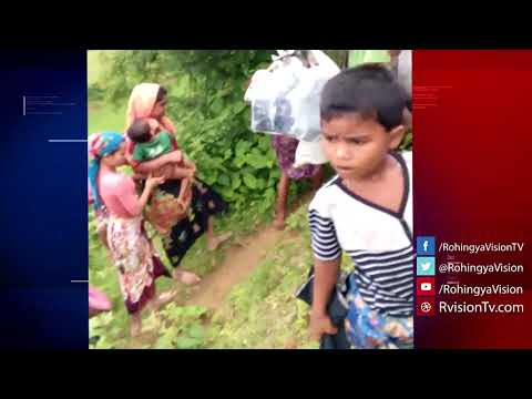 Shilhali S, Maungdaw, Arakan on 29 August 2017: Eyewitness