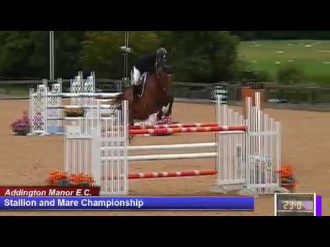 British Young Horse Showjumping Championships Stallion & Mare Championship - Friday 18th August 2017