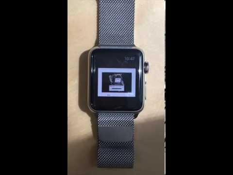 Mac OS 7.5.5 running on my Apple Watch