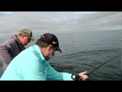 Alaska Fishing, Glacier Bay, Halibut, Ling Cod, Salmon Pt. 2