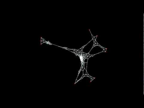 Slime Mold Simulation - Agents Network Relaxation
