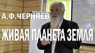 видео Живая Земля. Андрей Рубанов - Он улетел, но обещал вернуться. - Отзывы на Відгук.Укр
