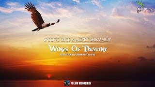 Specific Slice & Alexey Shirmalov - Wings Of Destiny (Damian Wasse Remix)
