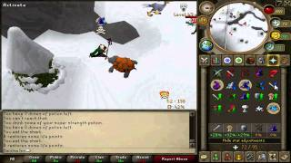 Runescape - Pink Fluffy Bunny PK Video 4