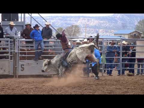 Triple Threat Bull Riding