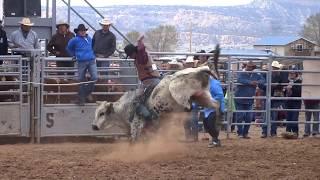 Triple Threat Bull Riding