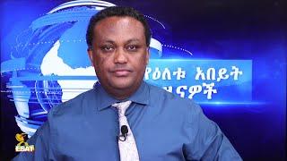 Ethiopia - ESAT DC Daily News Tue 24 Nov 2020