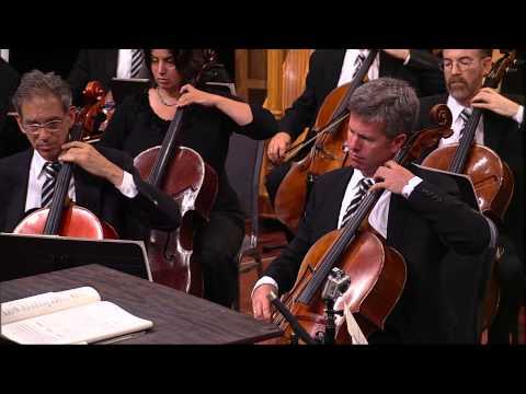 AllStar Orchestra Episode 4: Politics and Art