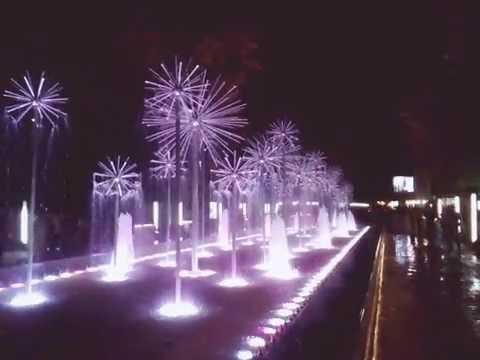П-павловск ночью